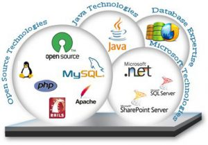 web programing 300x209 web programing